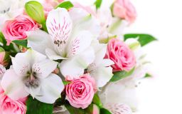 Pink Roses and White Lilies  Wallpaper